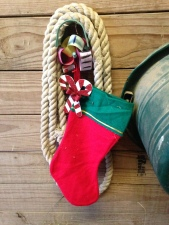 Stockings are hung on the horse stalls with care...